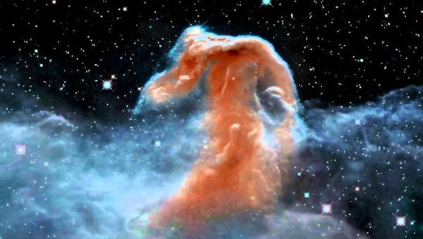 El caballo de Orión