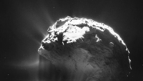 El vals de Rosetta